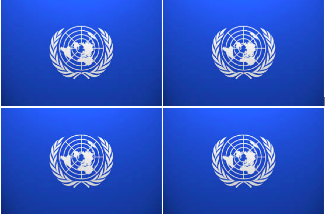 École Universitaire Internationale Organismo di esempio per le Nazioni Unite